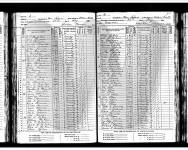 1885 Minnesota State Census - Marshall, New Solum