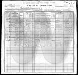 1900 US Federal Census - Illinois, Cook, Chicago, Town of Lake, e.d. 873, sheet 21A