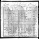 1900 US Federal Census - Minnesota, Goodhue, Red Wing, e.d. 052, sheet 9A